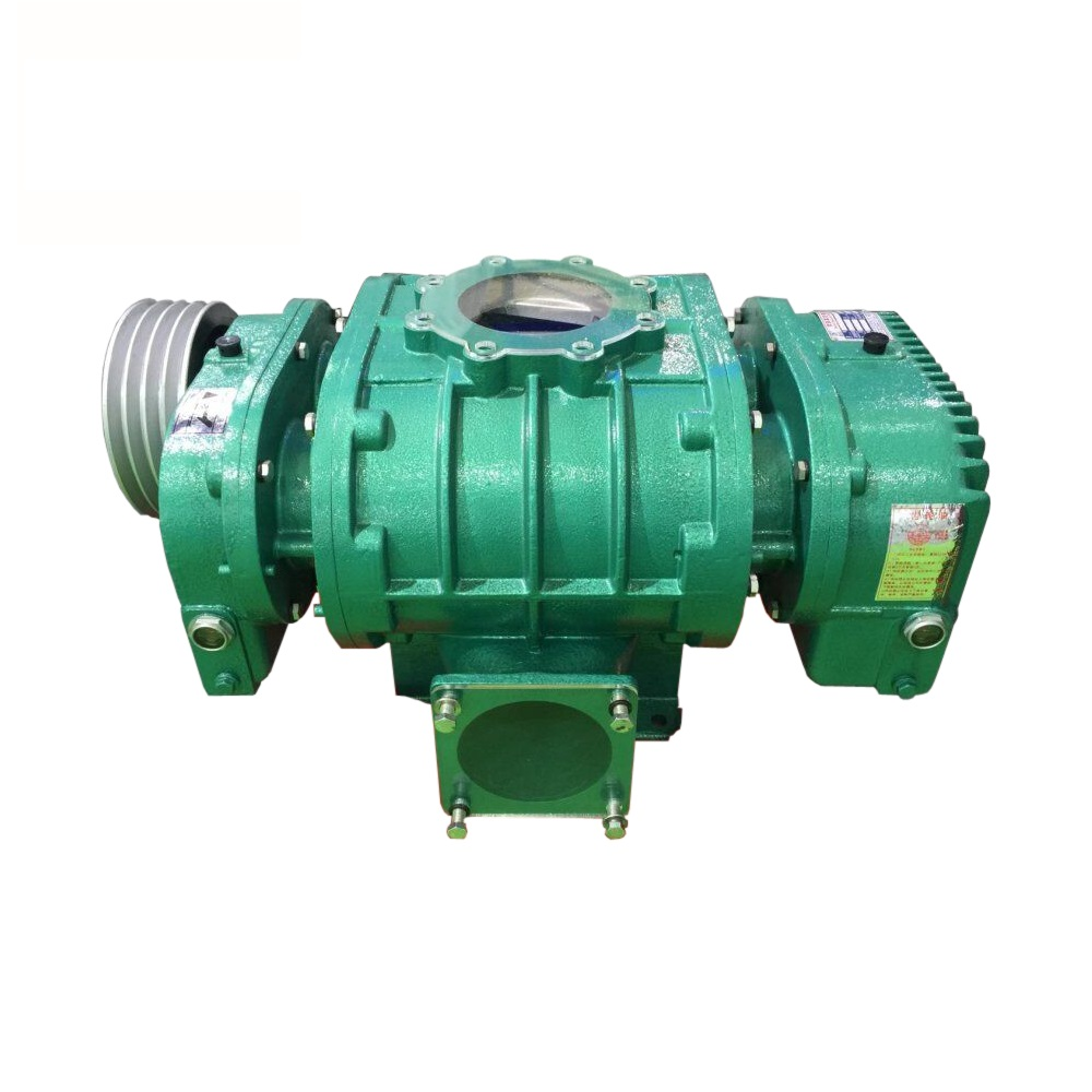 Rotary Blower Roots Vacuum Pump