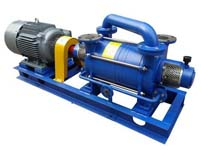 Water Ring Vacuum Pump for Food Related Industry